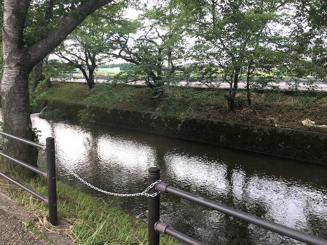 五条川3.jpg