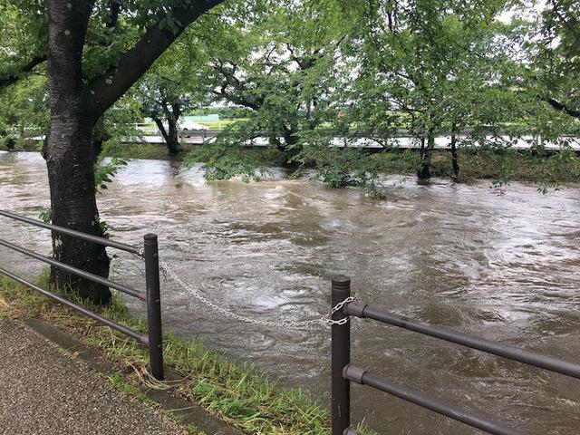 五条川洪水1.jpg