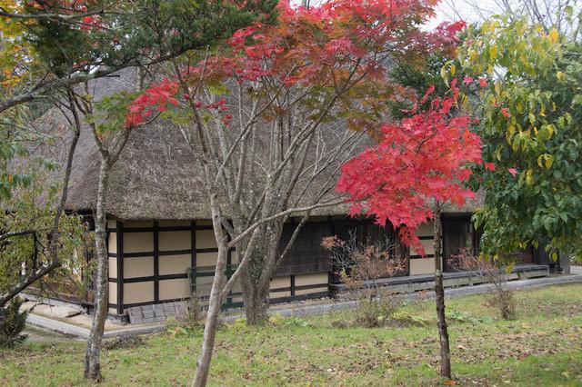 ふる里の森10-15.jpg